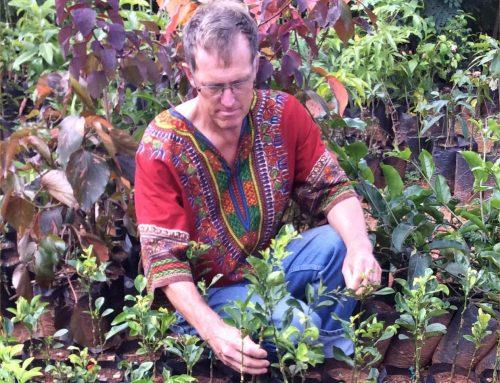Lloyd Rowlands in Congo again